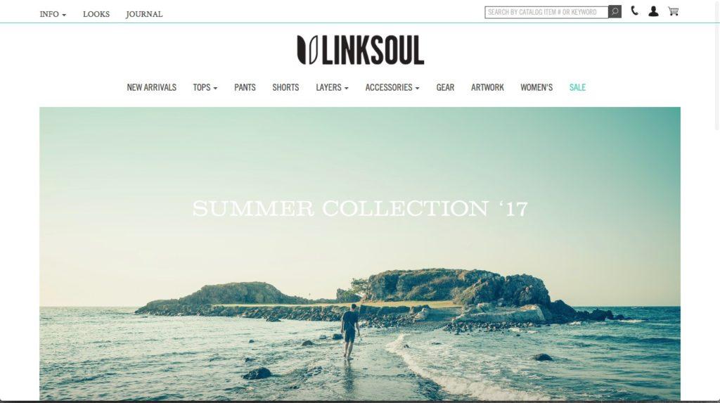 Website-Screenshot-Linksoul
