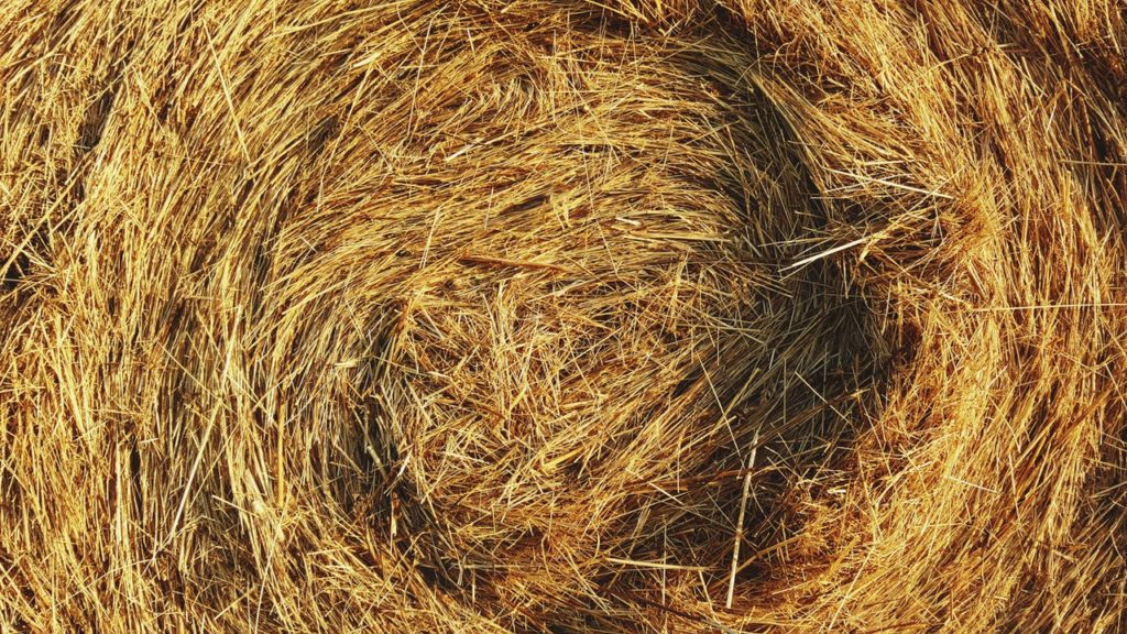 It's recommendation engine's job to reveal the needle in the hay!